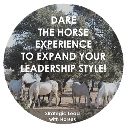 Strategic Lead With Horses Logo